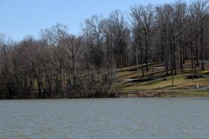 Cane Creek Kentucky Lake Marina campsites