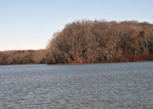 Go fishing from the Cane Creek Kentucky Lake Marina