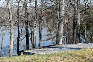 Lots available at RV Campgrounds near land between the lakes