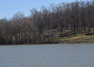Which campsite at this new Kentucky Lake Marina and Campgrounds at Cane Creek