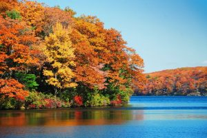 Kentucky lake camping is perfect for fall
