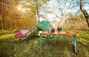 Top 3 Reasons to Enjoy Kentucky Lake Camping in Spring